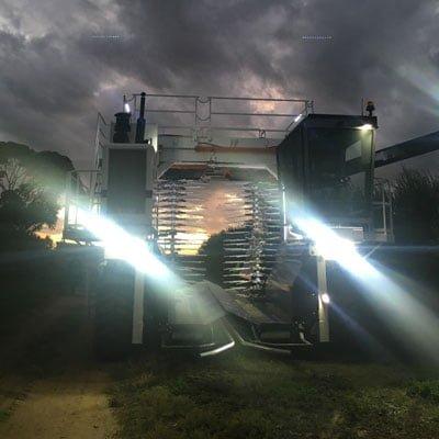 Olive harvester at dusk